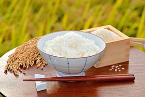 減反廃止で日本のご飯がおいしくなる?