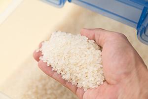 お米は生もの!鮮度を保つ正しい保存方法