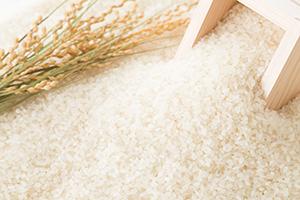 もはや常識?料理によってお米を使い分け