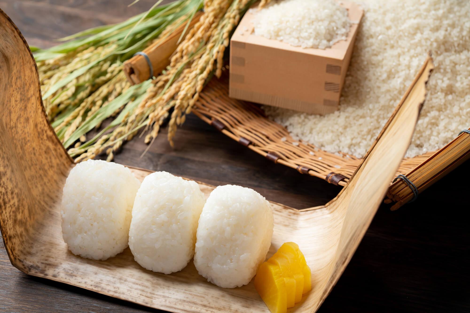 お米にはどれくらいの食物繊維が含まれているの?