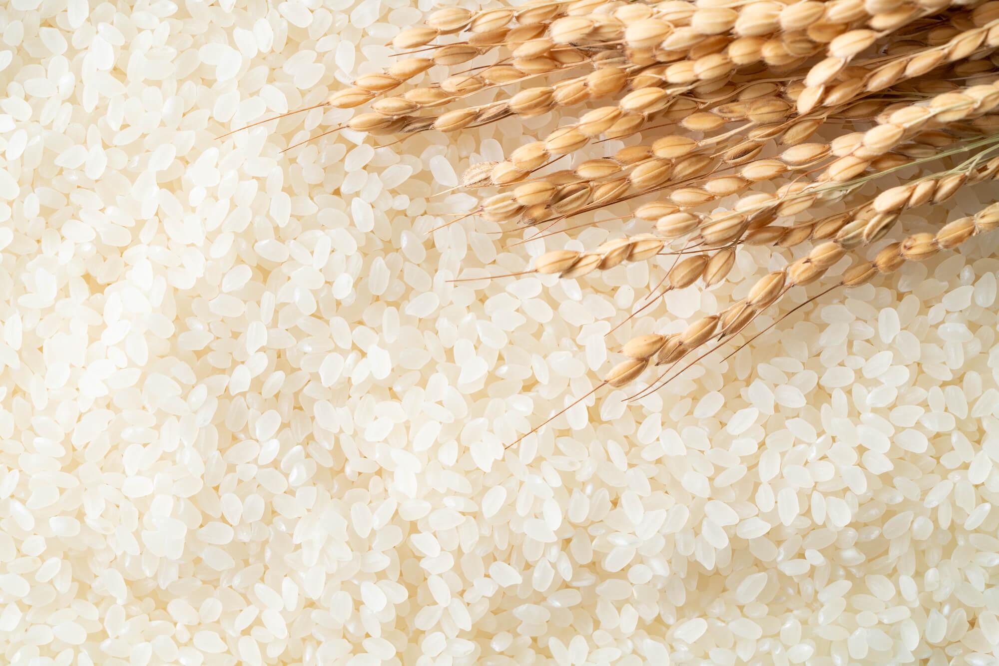 お米が黒っぽい…食べても大丈夫?